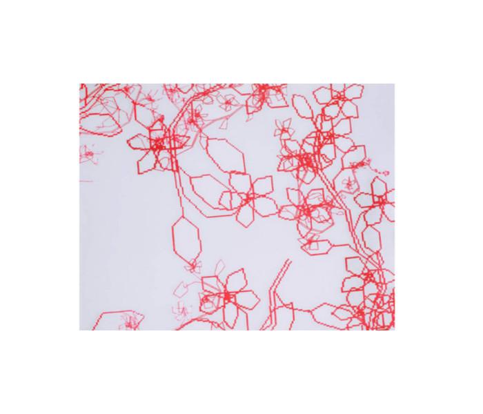 Voilage imprimé d'un motif floral